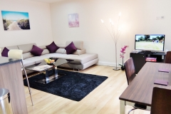 9 living area Colindale serviced apartment 60